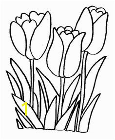 Tulips Printable Flower Coloring Pages Coloring Pages For Kids Coloring Books Printable Coloring