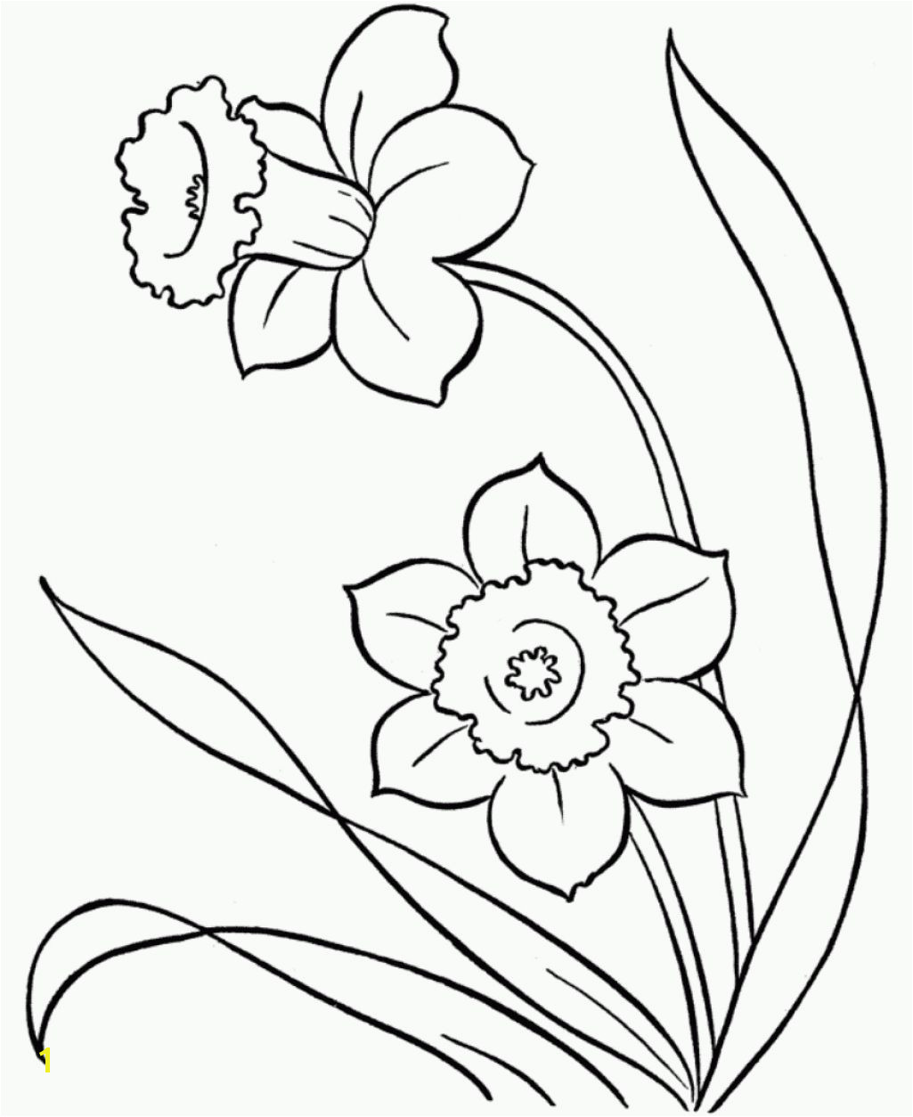 Snowdrop Coloring Pages Line Drawings Of Snowdrops Google Search