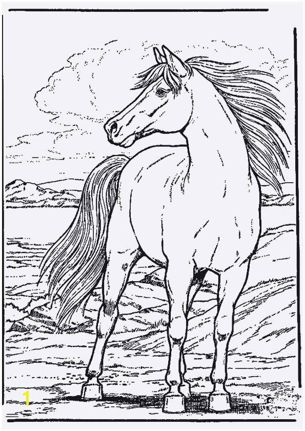 pferde ausmalbilder unique 42 ausmalbilder pferde spirit coloring pages of pferde ausmalbilder 1
