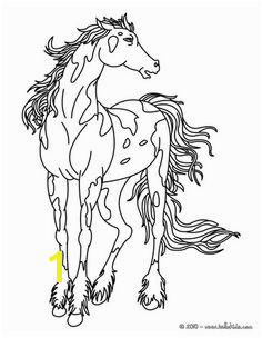 Spotted Horse Coloring Pages 118 Best Horse Color Pages Images On Pinterest