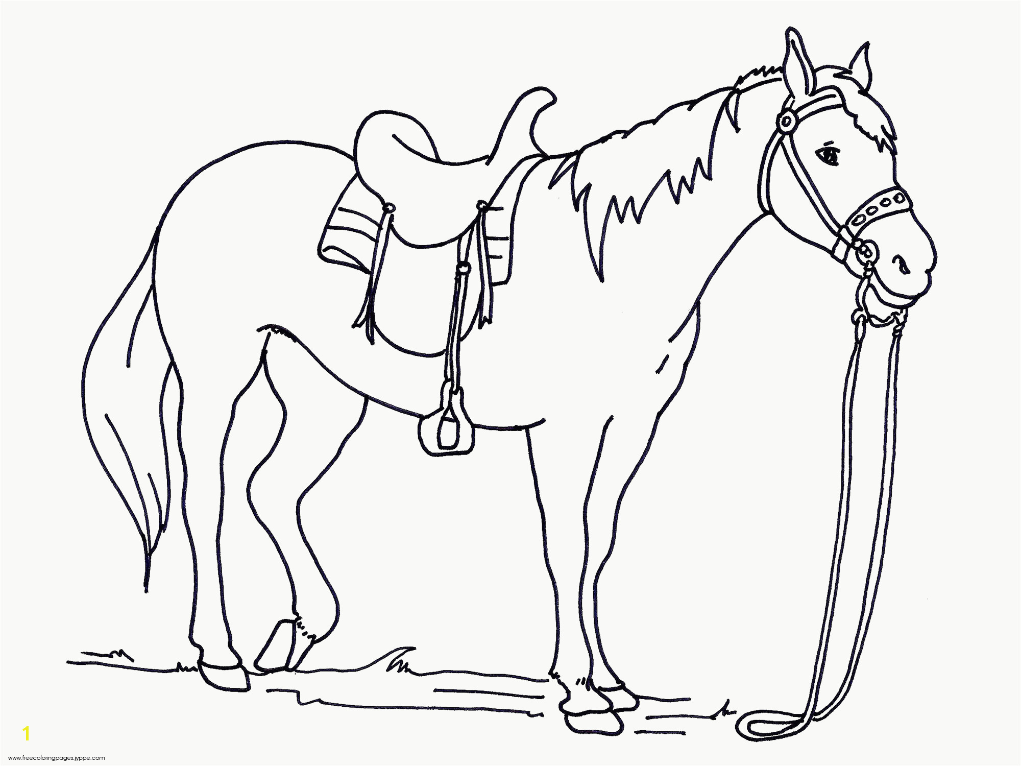 Big Printable Coloring Pages Horses Coloring Pages For All Ages