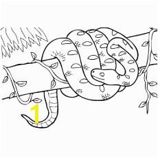 The boa constrictor