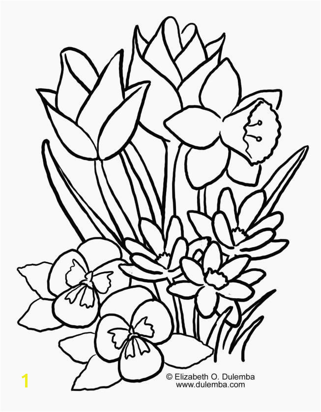Spring Flowers Colouring Pages 13 Elegant Spring Flowers Coloring Pages