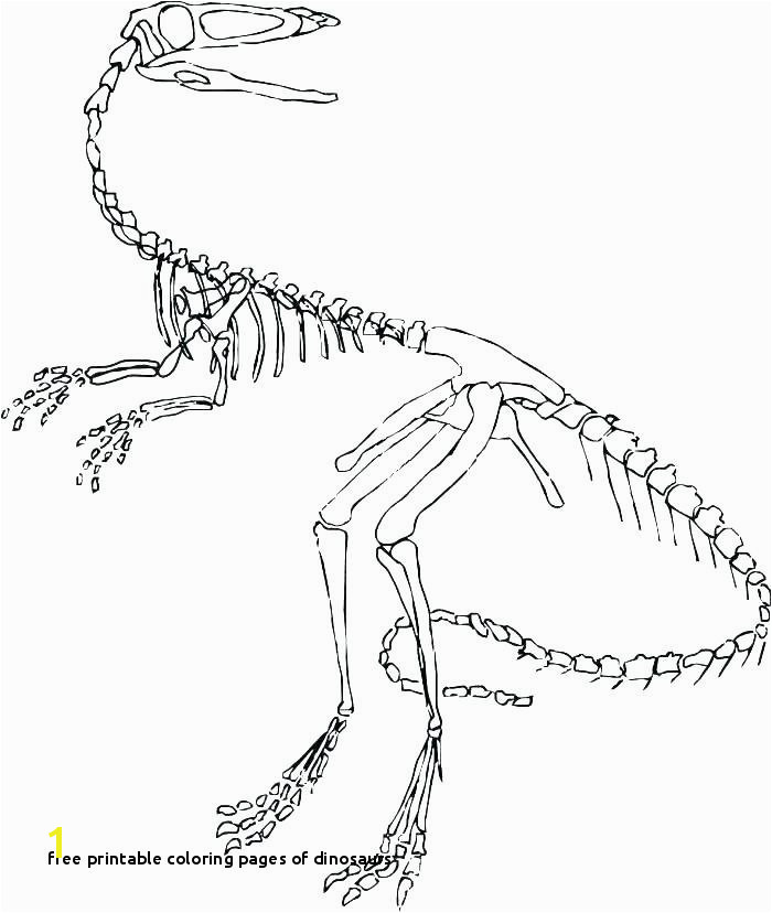 Free Printable Coloring Pages Dinosaurs Dinosaur Skeleton Coloring Pages Book to H Free Dinosaur