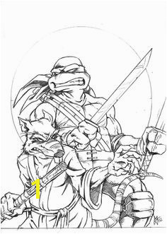Teenage Mutant Ninja Turtles Coloring Pages Pdf 88 Best Ninja Turtles Coloring Pages Images