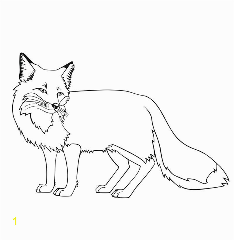 fox coloring sheets fox coloring pages new baby fox coloring pages