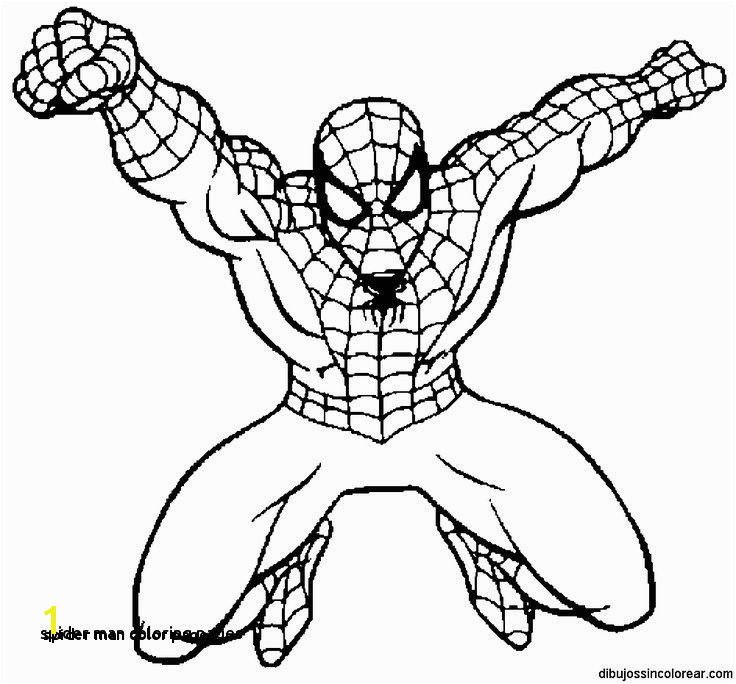 Spider Man Color Pages Spider Man Coloring Pages 0 0d Spiderman Spider Man Coloring Pages