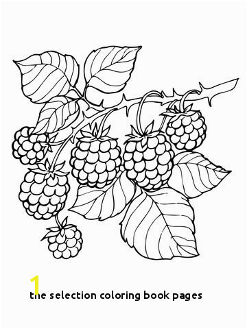 the Selection Coloring Book Pages Blackberry Branch Coloring Page From Blackberry Category Select