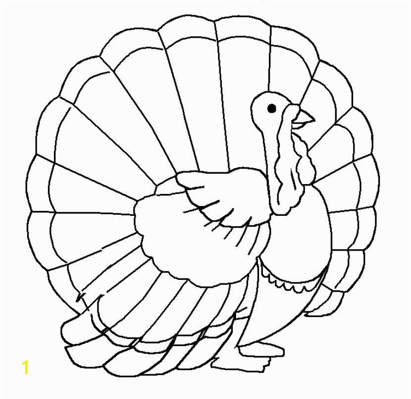 A proud Thanksgiving turkey