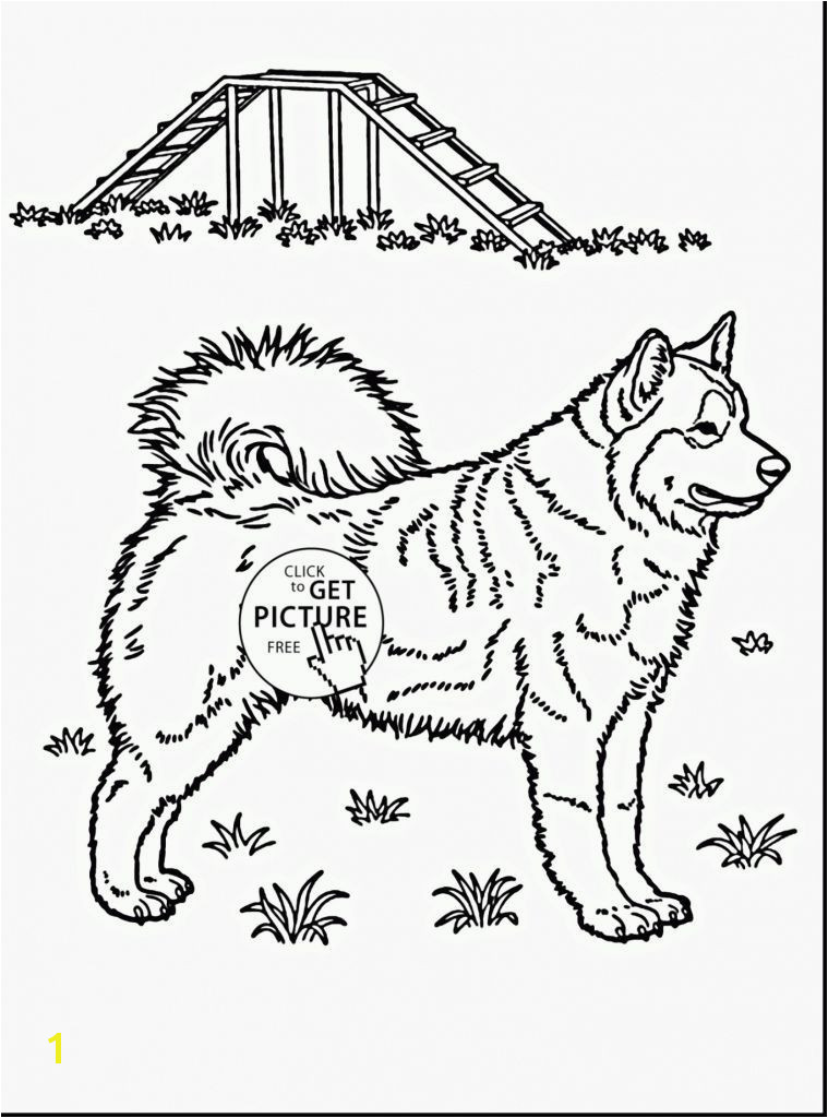turn pictures into coloring pages free online husky coloring pages beautiful husky coloring 0d free coloring pages fun time of husky coloring pages