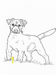 Weimaraner Coloring Pages Lovely 217 Best Dogs to Color Pinterest 16 Beautiful Weimaraner