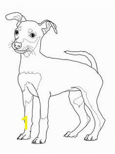 Weimaraner Coloring Pages Elegant 217 Best Dogs to Color Pinterest 16 Beautiful Weimaraner