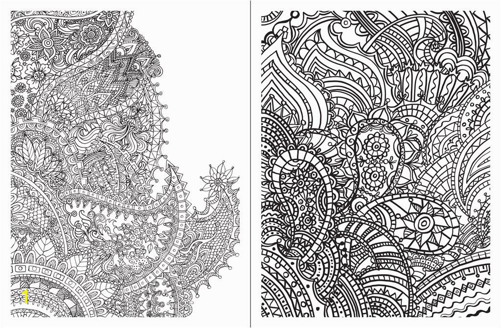 Posh Adult Coloring Book Paisley Designs for Fun & Relaxation Teresa Roberts Logan