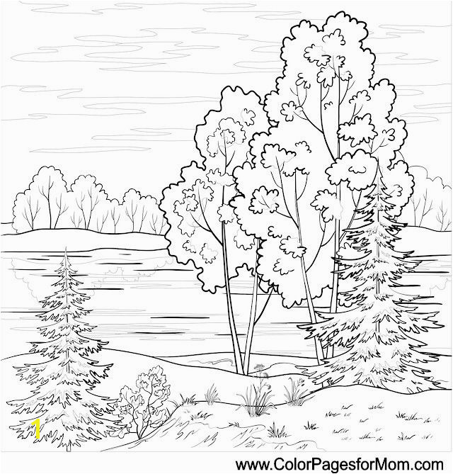landscape coloring page 16 colorpagesforadults coloring