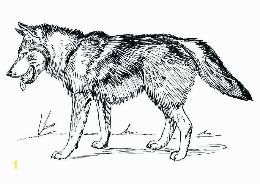 Awesome Coloring Pages Wolf for Adults Pleasing Coloring Pages Wolf for Adults