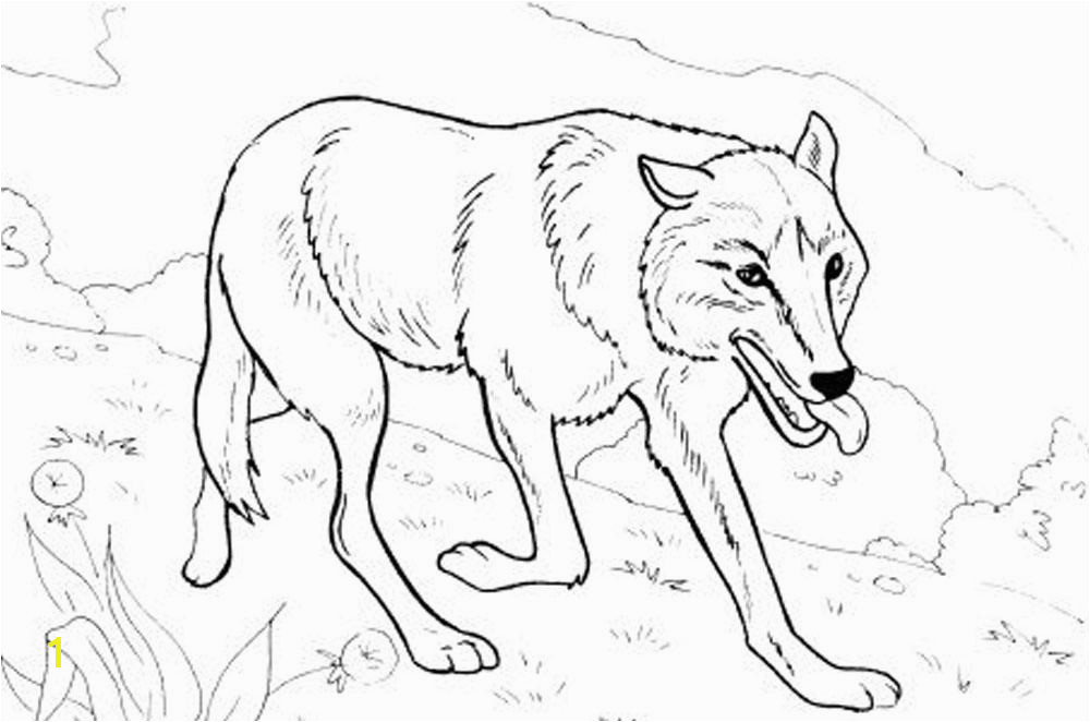 Wolf Coloring Pages Printable Print & Download Wolf Coloring Pages theme