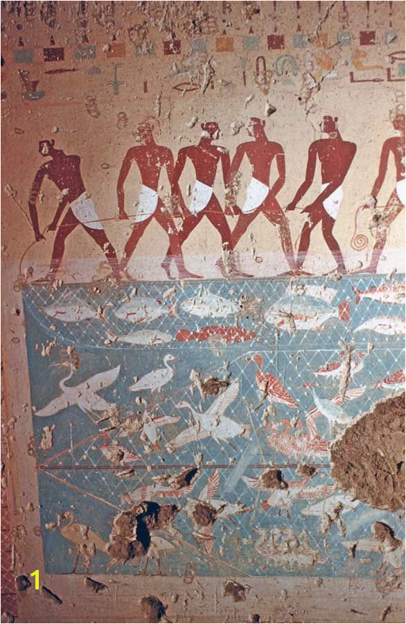 Tomb of Antefoqer TT60 reign of Amenemhat I and Senuseret I fishing