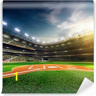 Baseball Wall Murals Taste The Sport Emotions Pixers