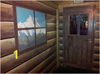 Log cabin themed wall mural in ice rink party rooms