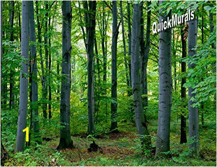 Cabin In the Woods Wall Mural Woodland forest Peel & Stick Canvas Wall Mural 10 1 2 Feet Wide X 8