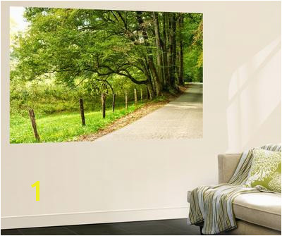 Beautiful Country wall murals artwork for sale Posters and Prints