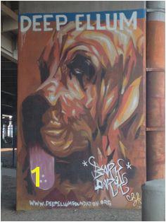 Deep Ellum Dog Park Local Parks Dog Park Central Park Dallas Graffiti