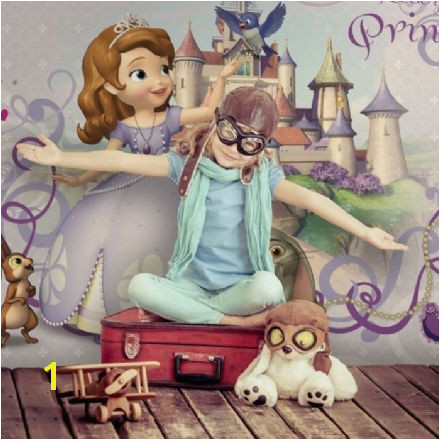 Disney Princess Sofia purple wall murals