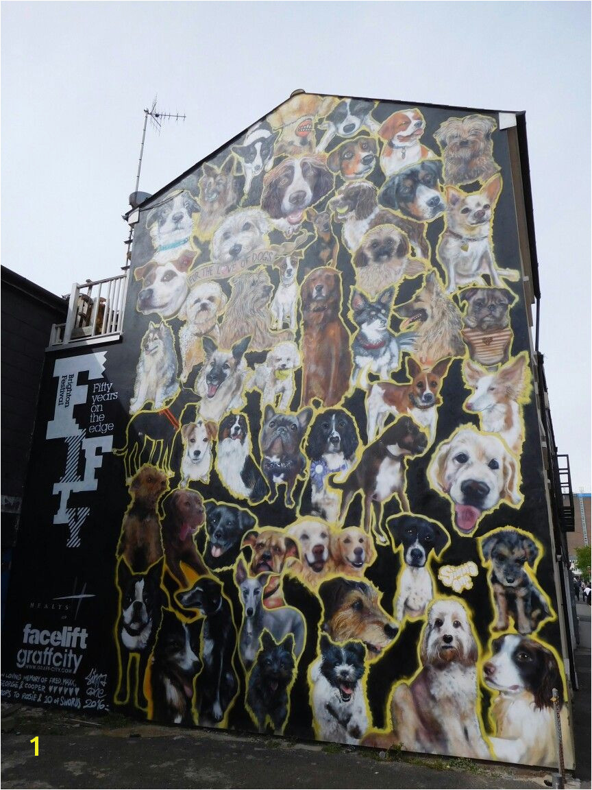 Dog mural for Brighton Festival in Kensington St