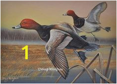 Redhead Ducks Original Painting by Doug Walpus Birds Waterfowl Duck Acrylic Game Bird Hunting Wall Decor Wall Art fice Decor Gifts
