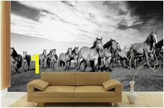 Running Horse Wall Mural Horse Mural Horse Art Running Horses Western Decor