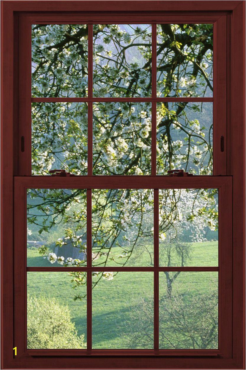 Window Poster Garden Mirrors Faux Window Basement Windows Window View Great