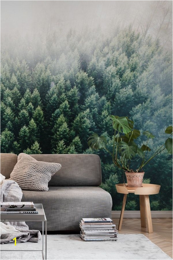 Forests from the Sky II wall mural from happywall fog wallmural mural woods treetops pines wallpapers aerial drone forest foggy wallmurals