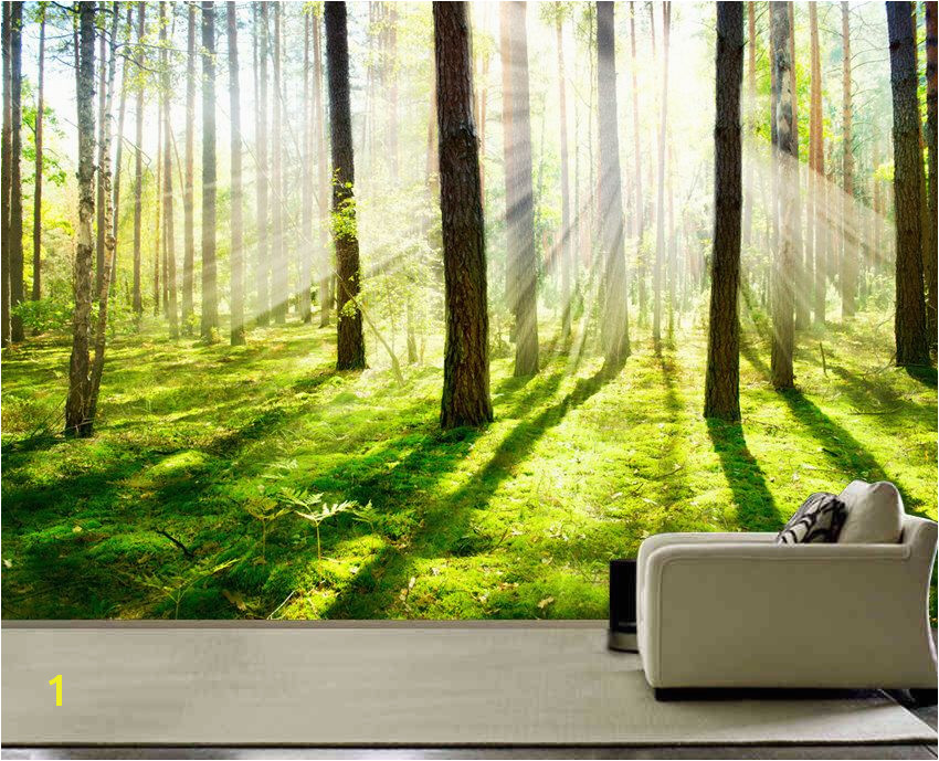 Morning forest Fog wall mural picture wall paper repositionable peel & stick wall