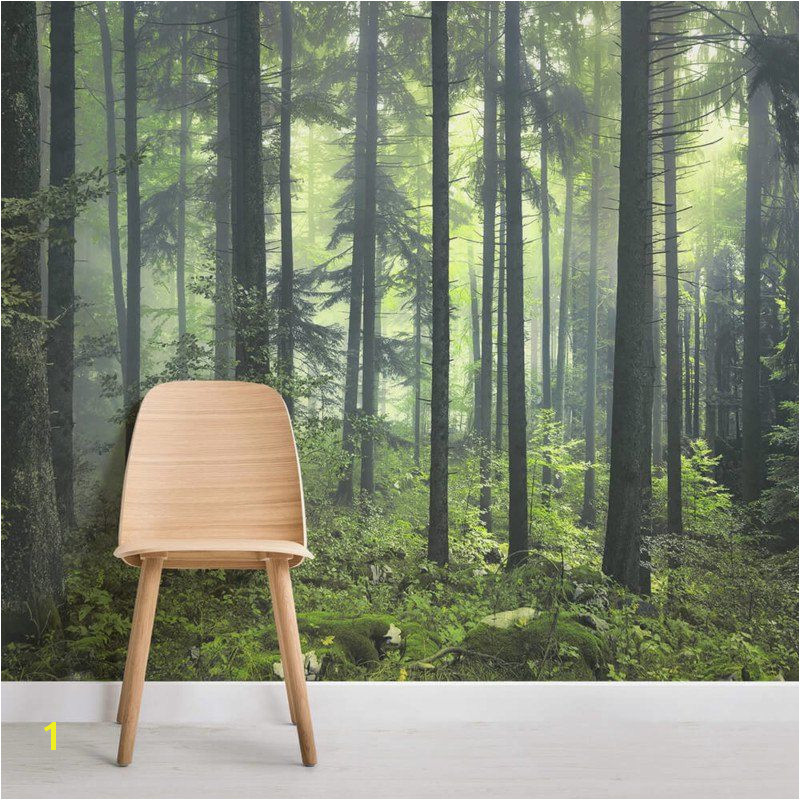 mysterious spring forest square wall murals