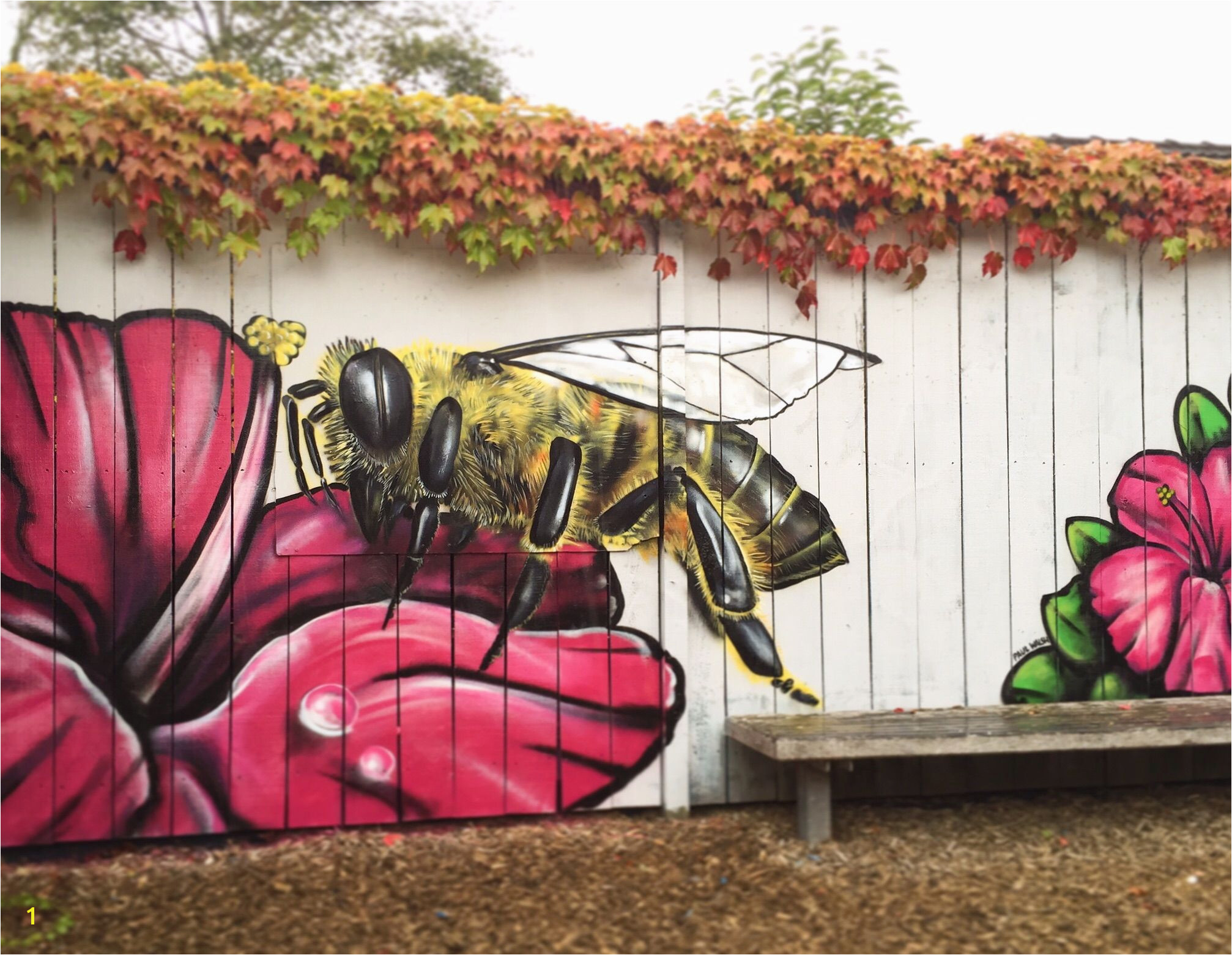 I spent my Sunday morning painting a bee on the fence of a local munity centre