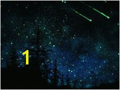 Glow In the Dark Star Murals 32 Best Glow In the Dark Paintings Images