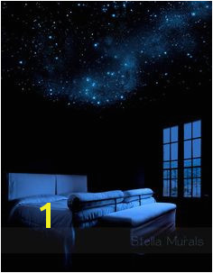 Glow In the Dark Star Murals 38 Best Stars On Ceiling Images