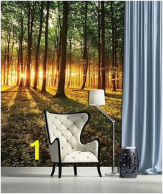 Tree Wallpaper Mural Tree Wall Murals Storage Spaces Interior Decorating Wall Decor