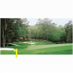 Biggies GM AGA 54 Augusta Golf Murals Hole No 12 Furniture