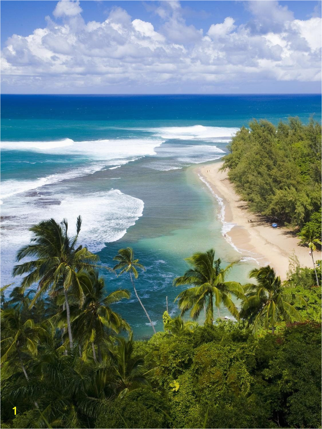 Wallmonkeys Kee Beach from Kalalau Trail Peel and Stick Wall Decals WM 36 in H x 27 in W Startling review available here This is an