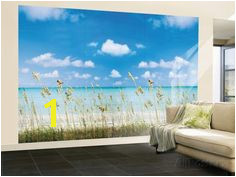 Wall Mural Posters