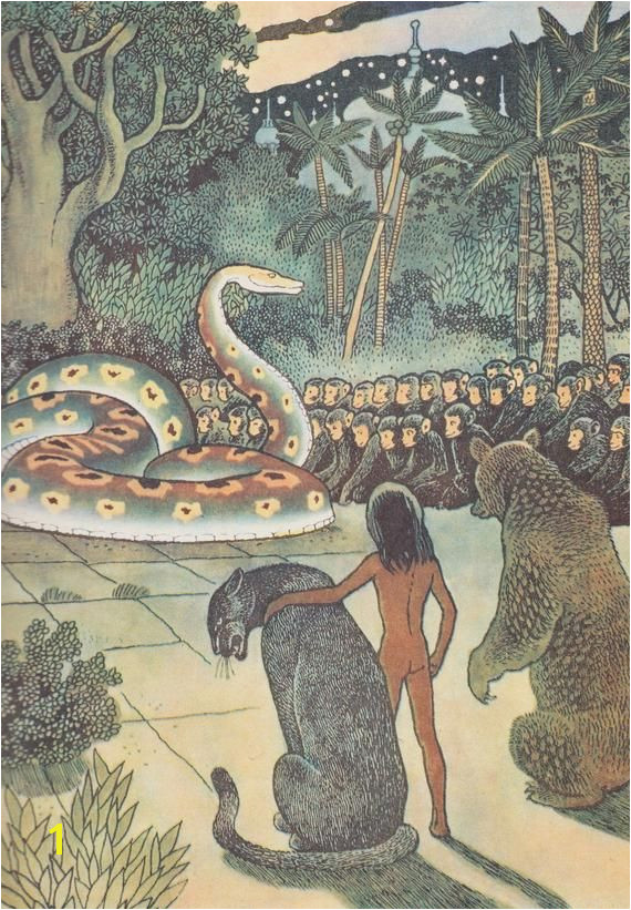Rudyard Kipling The Jungle Book Mowgli Story Drawings by