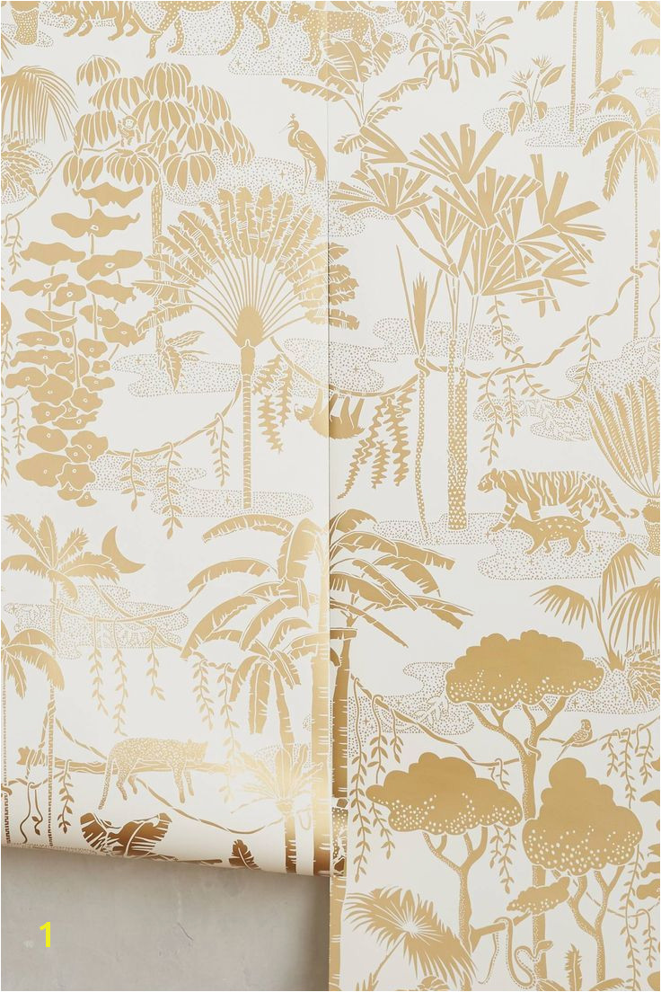 Jungle Dreams Wall Mural Jungle Dream Wallpaper Decor 101