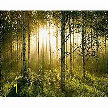 Huge Wall Mural 12 Feet 6 Inch Wide X 9 Feet High Covers an Entire Wall Tropical Beaches Waterfalls Mountains Nature Sunlight Forest Wall Mural