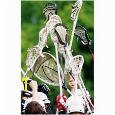 lacrosse wall mural perfect for a Maryland theme boy s room