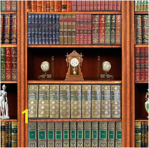 Image is loading Dolls House Victorian Wallpaper Library Books Mural Quality