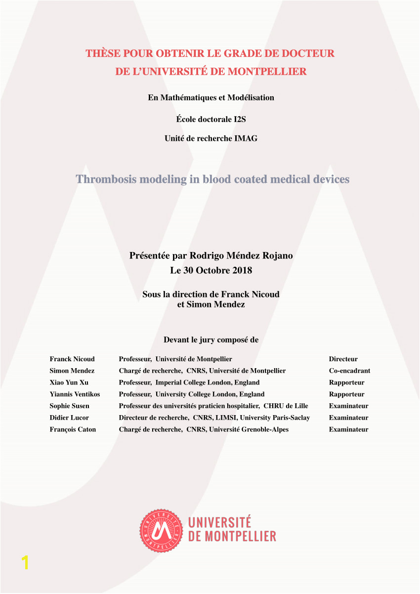 putational Model of Device Induced Thrombosis and Thromboembolism
