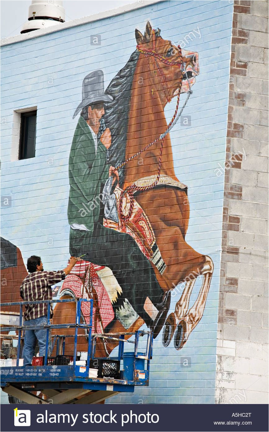 Illinois Chicago Adult Mexican Male Paint Outdoor Mural Brick