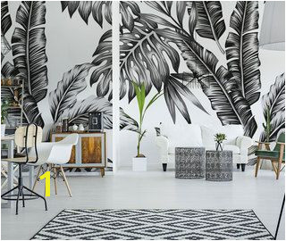 Black and white wall murals and photo wallpapers monochromatic – Demural UK