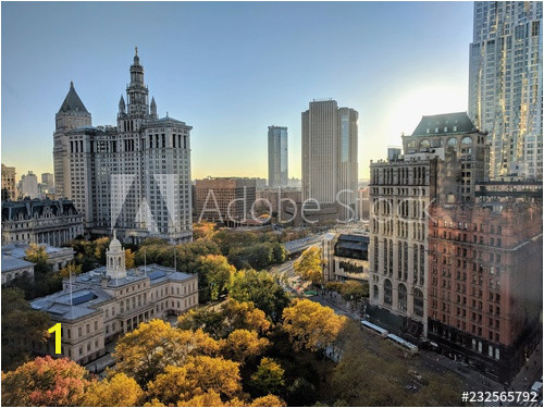 click for Wall Decals price · City Hall Park in the Morning